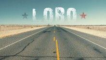 lobo_1